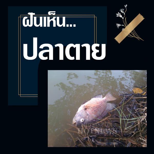 ทำนายฝันเห็นปลาตาย